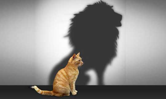 Qué es Autoestima? - Su Definición, Concepto y Significado