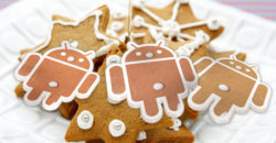 Android Gingerbread 5