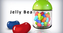 Android_Jelly_Bean2