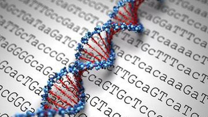 Biología_Molecular