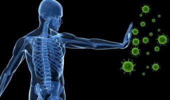 Sistema inmunológico 3